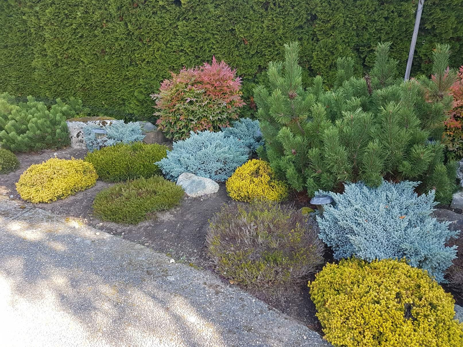 True Earth Landscapes Lawn Care Services Maintenance Victoria Bc